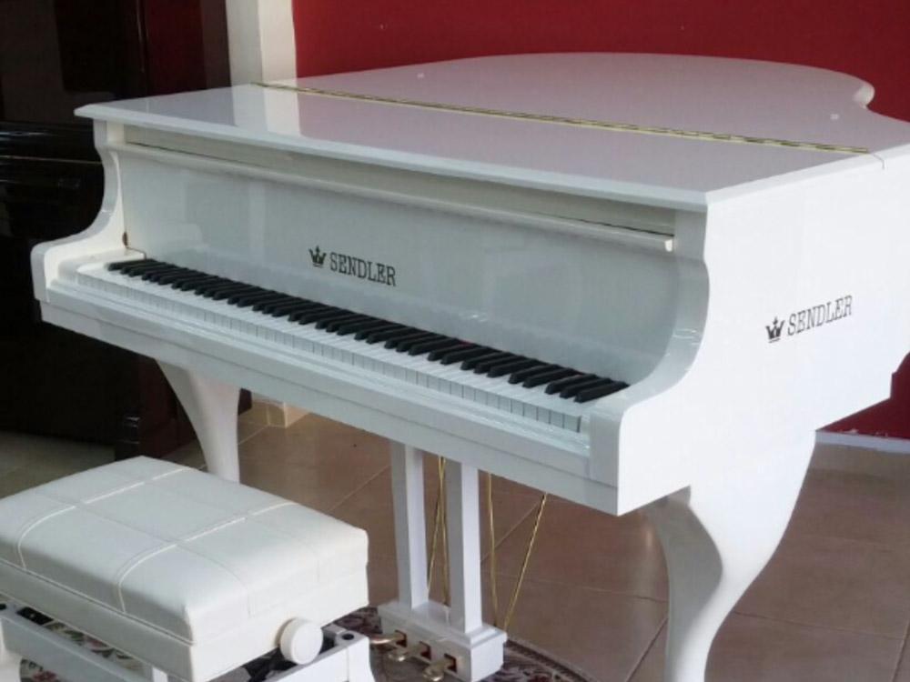 בלתי רגיל פסנתר כנף ייחודי בצבע לבן | בני מילר פסנתרי איכות | פסנתרים יד שניה RC-35